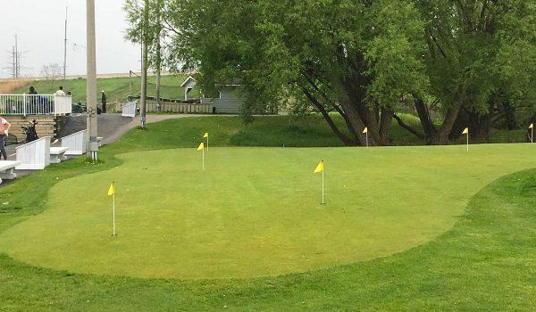 markham-golf-dome-bkgd-IMG_0529-m