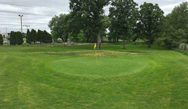 markham-golf-dome-bkgd-IMG_0587-m